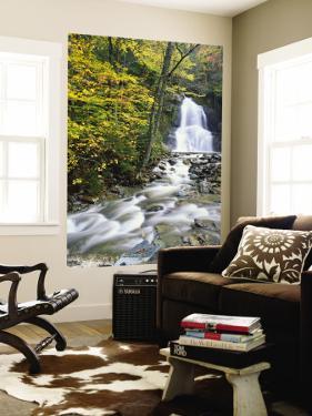 Moss Glen Falls in Autumn, Granvillie, Vermont, USA by Adam Jones