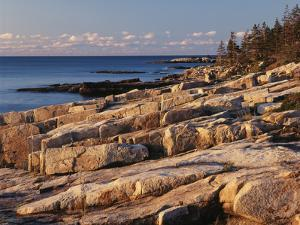 Mt Desert Island, View of Rocks with Forest, Acadia National Park, Maine, USA by Adam Jones