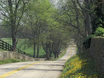 Old Iron Works Road, Lexington, Kentucky, USA