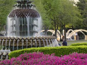 Pineapple Fountain, Charleston, South Carolina, USA by Adam Jones