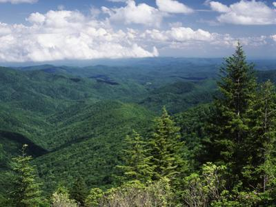 Pisgah National Forest, North Carolina, USA by Adam Jones