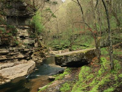 Raven Run Nature Sanctuary, Lexington, Kentucky, USA