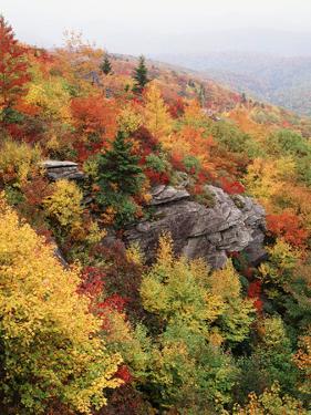 View of Autumnal Rocks, Blue Ridge Parkway, North Carolina, USA by Adam Jones