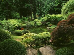 View of Strolling Pond Garden, Portland, Oregon, USA by Adam Jones