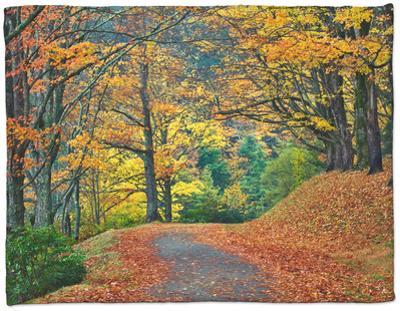 Walking Trail around Bass Lake in the Autumn, Blowing Rock, North Carolina, USA by Adam Jones