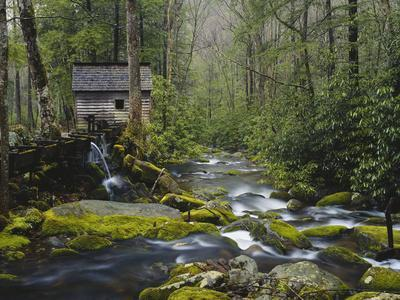 Watermill in Forest by Stream, Roaring Fork, Great Smoky Mountains National Park, Tennessee, USA