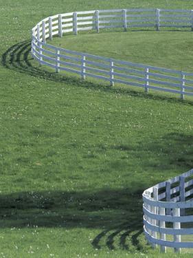 White Fence on Horse Farm, Lexington, Kentucky, USA by Adam Jones