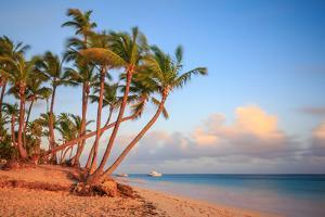 Dawn in Punta Cana by Adam Romanowicz