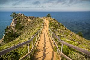 Path To Muir Beach by Adam Romanowicz