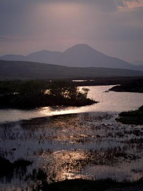 Caillich and the Cuillin Hills in the Background, Isle of Skye, Highland Region, Scotland by Adam Woolfitt