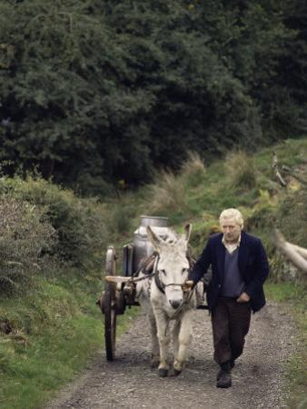 Donkey Cart, County Leitrim, Connacht, Republic of Ireland (Eire) by Adam Woolfitt