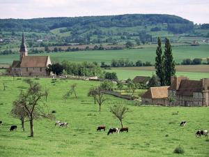 Farms Near Vieux-Pont-En-Ange, Near Boissey, Basse Normandie (Normandy), France by Adam Woolfitt