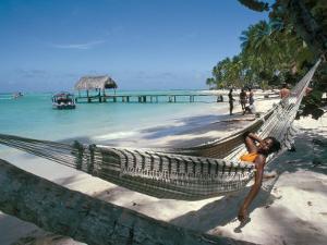 Hammock on the Beach, Tobago, West Indies, Caribbean, Central America by Adam Woolfitt