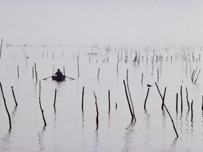 Oyster Beds, Arcachon, Gironde, Aquitaine, France