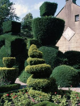 Topiary, Levens Hall, Cumbria, England, United Kingdom by Adam Woolfitt