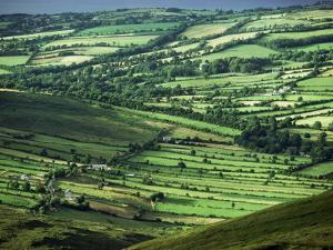 View Towards Lough Derg from Arra Mountains, County Clare, Munster, Republic of Ireland (Eire) by Adam Woolfitt