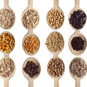 Different Type Of Seeds On Wooden Spoon by adamr