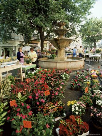 Fountain and Flower Market, Place Aux Aires, Grasse, Alpes-Maritimes, Provence, France