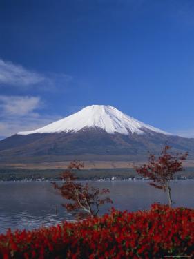 Mount Fuji, Honshu, Japan, Asia by Adina Tovy