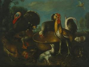 A Turkey, Duck, Rooster, Guinea Pig, and Rabbit by a Brass Urn, Genoese School, 18th Century by Adler & Sullivan
