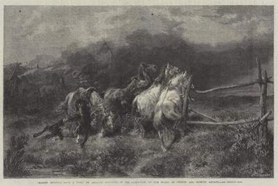 Horses Escaping from a Fire