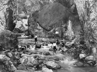 Cane River, Jamaica, C1905