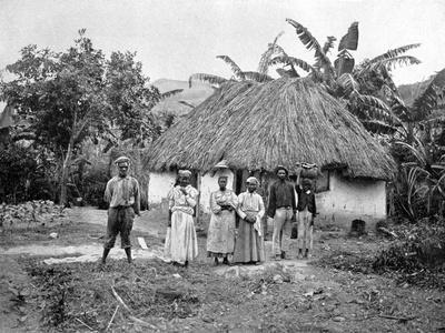 Negro Hut, Jamaica, C1905