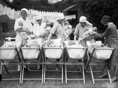 Adoption Society Babies