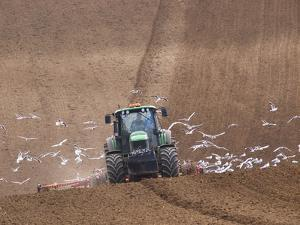 Sowing a Cereal Crop In Mid March by Adrian Bicker