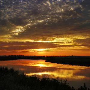 July Sunrise by Adrian Campfield