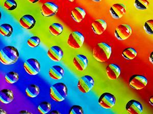 Multi-Coloured by Adrian Campfield