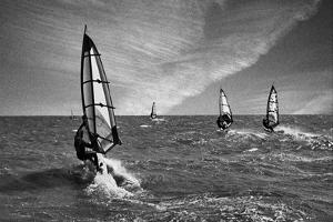 Racing Surfers by Adrian Campfield