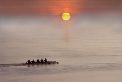 Row,Row,Row Your Boat by Adrian Campfield
