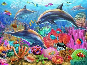 Dolphin Fun by Adrian Chesterman