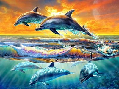 Dolphins at Dawn by Adrian Chesterman