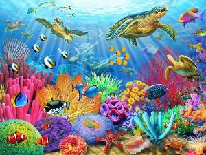 Turtle Coral Reef by Adrian Chesterman