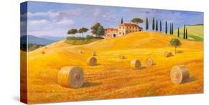 Colline in Toscana by Adriano Galasso