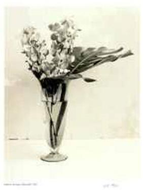 Floral #9 by Adriene Veninger