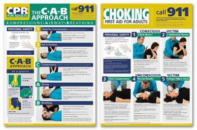 Adult CRP & Choking Poster Set-2