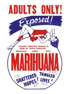 Adults Only! Marihuana