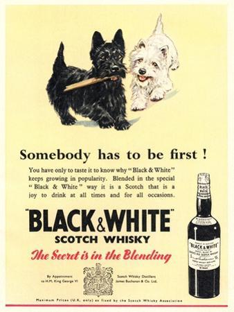 Advert for 'Black and White' Scotch Whisky