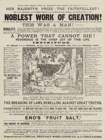 https://imgc.allpostersimages.com/img/posters/advertisement-eno-s-fruit-salt_u-L-PVMFLB0.jpg?p=0