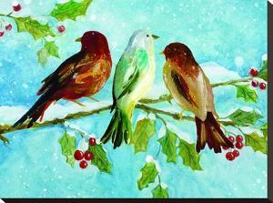 Three Birds On Holly by Advocate Art