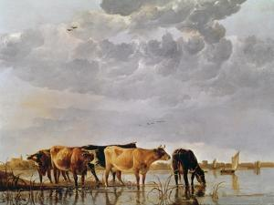 Cows in a River, C.1650 by Aelbert Cuyp