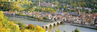 Aerial View of a City at the Riverside, Heidelberg Castle, Heidelberg, Baden-Wurttemberg, Germany