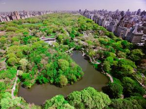 Aerial view of Central Park in spring near Columbus Circle in Manhattan, New York City, New York