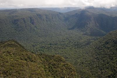 https://imgc.allpostersimages.com/img/posters/aerial-view-of-mountainous-rainforest-in-guyana-south-america_u-L-PWFRO00.jpg?p=0