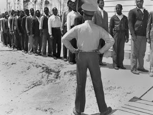 African American Marine Recruits Line Up to Begin Basic Training