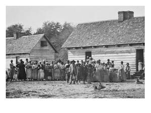 African American Slaves on a Plantation
