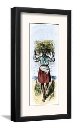 African-American Woman Carrying Sheaves on a Rice Plantation
